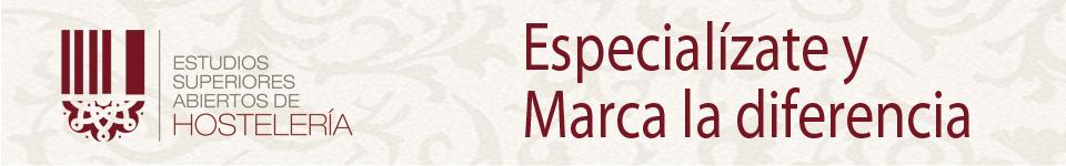 www.estudiahosteleria.com